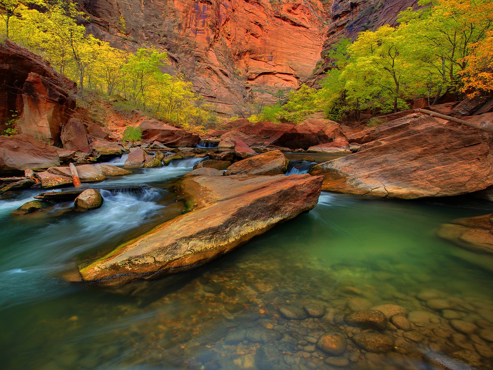Zion National Park Quotes: Behind The Scenes / Virtual COO